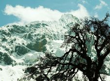 Free Cordilleras Landscape Stock Photography - 1667262