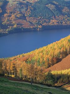 Free Autumn Colours By Thirlmere Royalty Free Stock Photo - 1668295