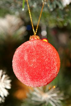 Free Christmas Decorative Ball Stock Photo - 1668800
