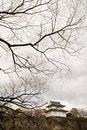 Free Winter In Osaka, Japan Stock Images - 16601904