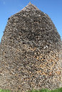 Free Pile Of Firewood Stock Photo - 16605870