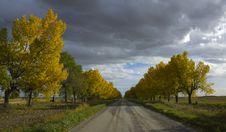 Autumn Afternoon Stock Image