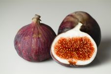 Free Fig Stock Photography - 16601012