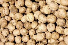 Free Nuts Royalty Free Stock Photo - 16601555