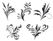 Free Collection Of Decorative Elements Stock Images - 16601854