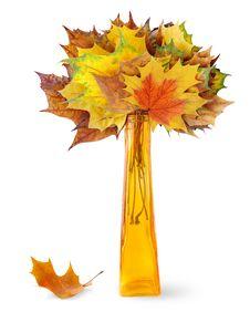Free Autumn Leaves Stock Photos - 16604133