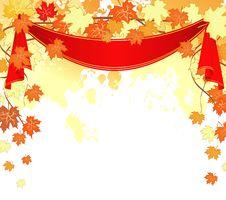 Free Autumn Leafs Back Stock Photo - 16605210