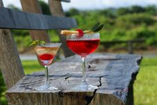 Cocktail Drink In Garden Nature Stock Photography