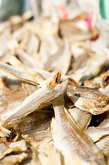 Free Fish Drying In The Sun Stock Image - 16607541