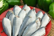 A Dish Of Fresh Fishes Royalty Free Stock Images