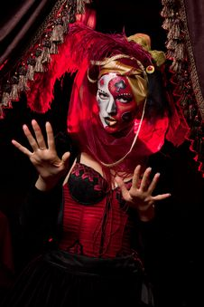 Free Venetian Mask Stock Images - 16607994