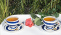 Free Two Porcelain Cups With Tea Royalty Free Stock Images - 16612999