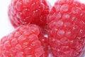 Free Ripe Raspberries. Stock Photos - 16618763