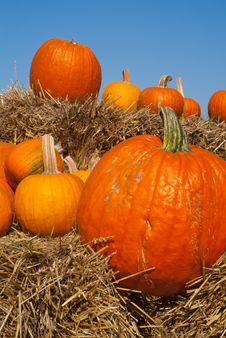 Pumpkins On Hay Bales With Blue Sky Backdrop Stock Photos