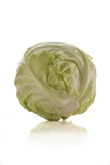 Free Cabbage Stock Images - 16612574