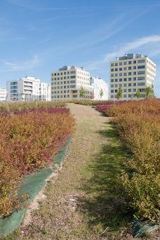 Vitoria, Green City In 2010 Royalty Free Stock Photography