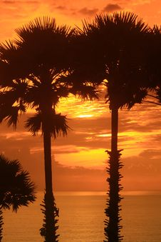 Free Sunset Stock Photography - 16615112