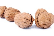 Free Walnut Royalty Free Stock Images - 16615359
