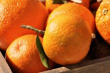 Free Basket Of Clementines Royalty Free Stock Photos - 16617478