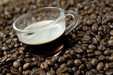 Free Cup Of Coffee Royalty Free Stock Images - 16618999