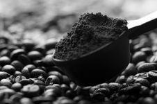 Free Coffee Bean Background Royalty Free Stock Photos - 16619538