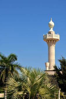 Free Tower In St. Petersburg, Florida Royalty Free Stock Photo - 16619645