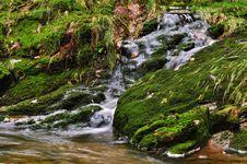 Free The River Bear Creek Stock Photos - 16619813