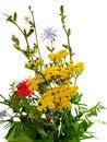Free Bucket Of Wildflowers On White Stock Photo - 16621170