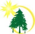 Free Comet Tree Stock Photos - 16623593
