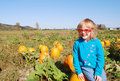 Free Cute Little Girl Sitting On The Pumpkin Stock Image - 16626741