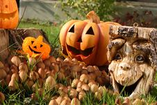 Free Halloween Decoration. Royalty Free Stock Image - 16622486