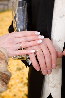 Free Hands Of Bride And Groom. Royalty Free Stock Photography - 16622617