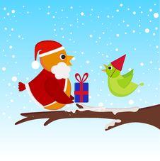 Free Christmas Bird Stock Photos - 16623043