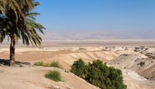 Free Desert Landscape With Oasis Royalty Free Stock Photos - 16625008