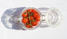 Free Tomato Stock Images - 16625754