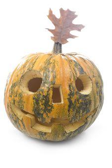 Free Pumpkin Stock Photos - 16626043