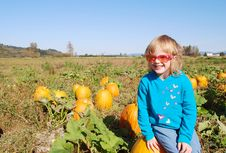 Cute Little Girl Sitting On The Pumpkin Stock Image