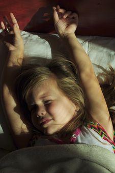 Free Morning Awakening Stock Image - 16626921