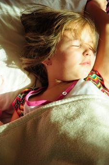 Free Morning Awakening Stock Image - 16627261