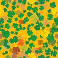 Autumn Leaves Pattern Stock Images