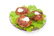 Free Cutlets With Salad Leaves Stock Images - 16628594