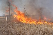 Free Grass Fire Royalty Free Stock Photo - 16629455
