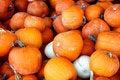Free Pumpkin Pile Stock Photo - 16637580