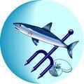 Free Shark Royalty Free Stock Photos - 16638848
