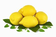 Free Lemons With Leafs Royalty Free Stock Photo - 16631585