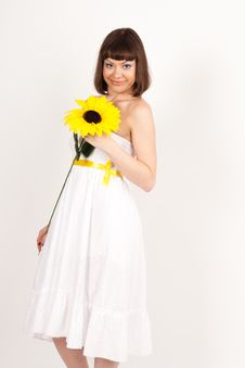 Free Girl With Sunflower Stock Images - 16631734
