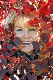 Woman, Autumn Royalty Free Stock Photo