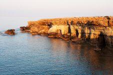 Free Cape Greko Stock Image - 16632991