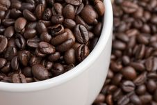 Free Close Up Of Coffee Beans In A Cup Stock Photography - 16634032
