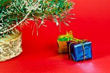 Free Christmas Tree Stock Image - 16634041